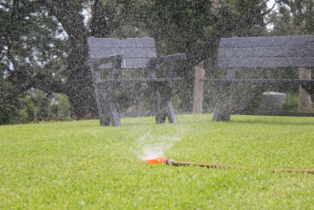 Watering newly laid turf.