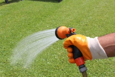 Person watering a new lawn